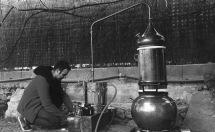 Destilación de plantas autoctonas.