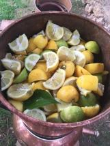 hidrolato y aceite esencial de limón