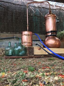 Destilación artesana de plantas