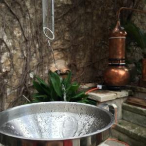 Vaso florentino