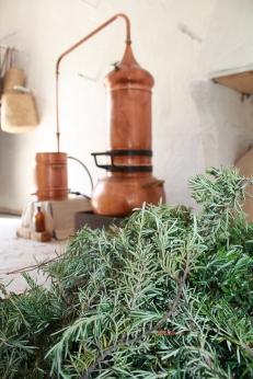 Destilación de Romero en el obrador
